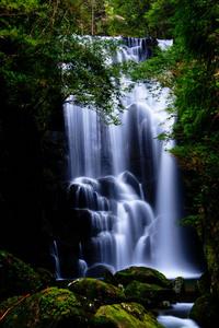 和歌山県 桑の木の滝.jpg